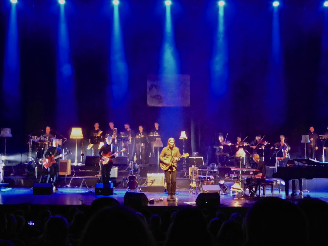 junius meyvant Icleand Concert