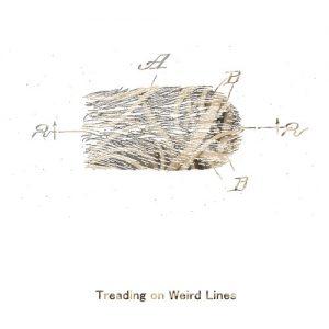 Waheela - Treading on Weird Lines